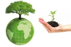 Phí bảo vệ môi trường - Những vấn đề cần quan tâm